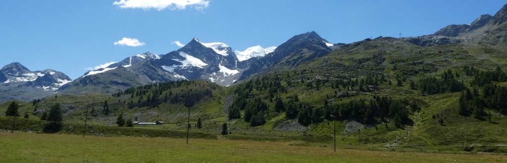 Bernina Seen 016
