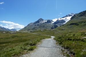 Bernina Seen 023