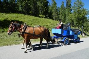 Fahrt n. St.Moritz 093