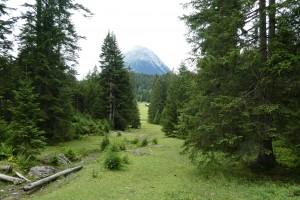 Mittenwald 6 Seefeld Mösern 095
