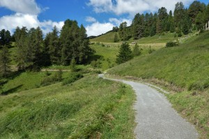 Schellenursli-Weg 012